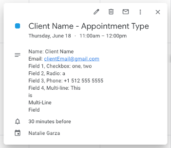 Appointment type - Google Calendar view